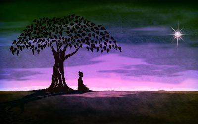 The Revolution of Meditation